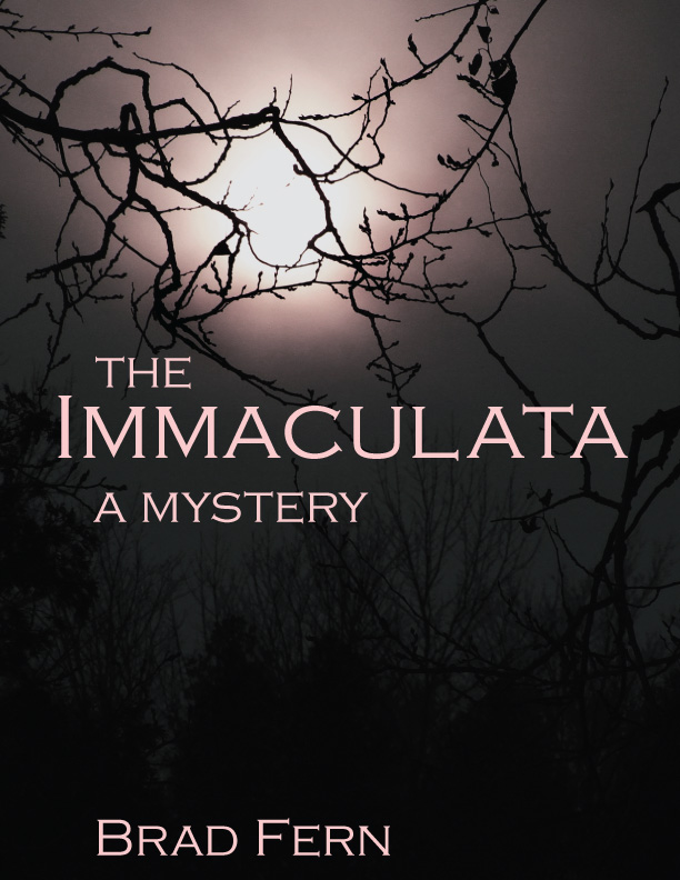 Final cover Immaculata